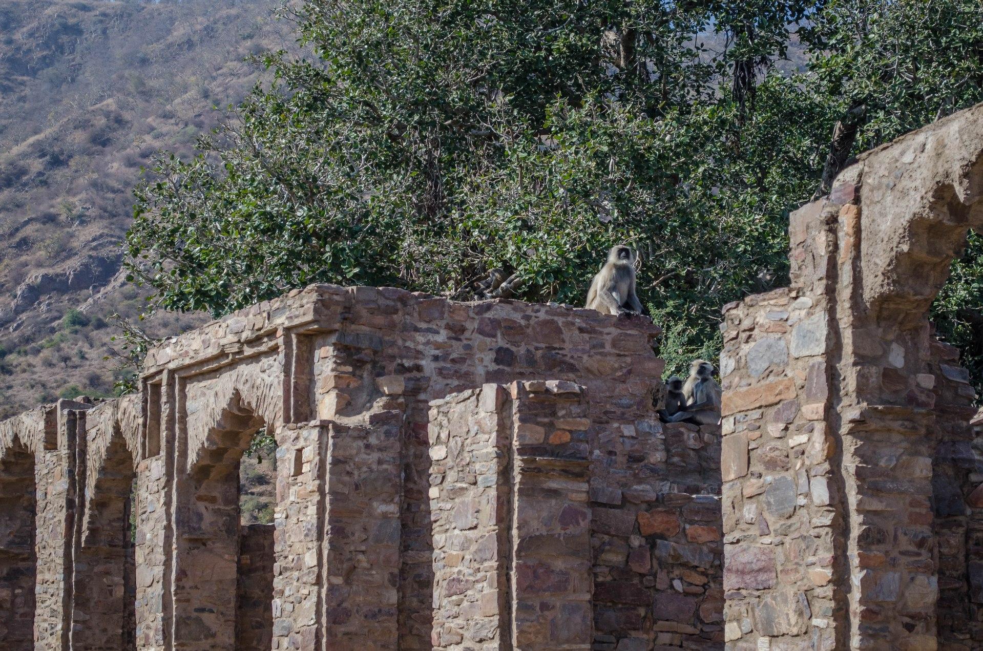 fort3DSC_0162