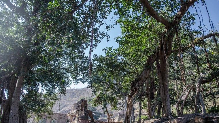 fort3DSC_0168