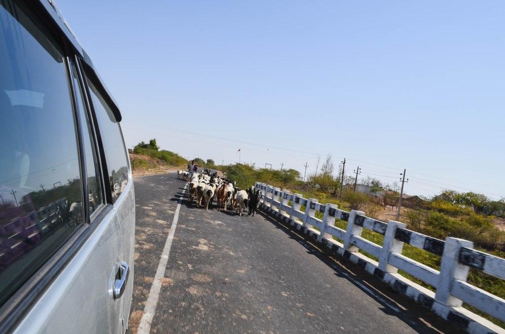 Dholavira, Kutch, Gujarat