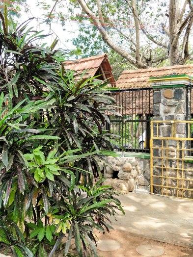Greens Guest House, Auroville